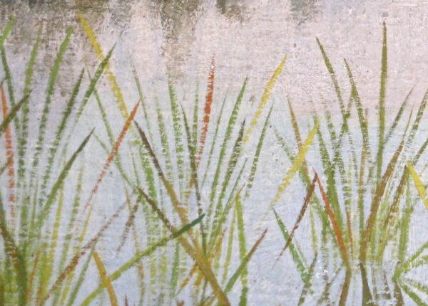2008 Waterlelie Smorenberg 08.0007